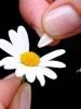 Полнолуние-влияние на человека - последнее сообщение от Vikysa